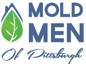 mold men of pittsburgh